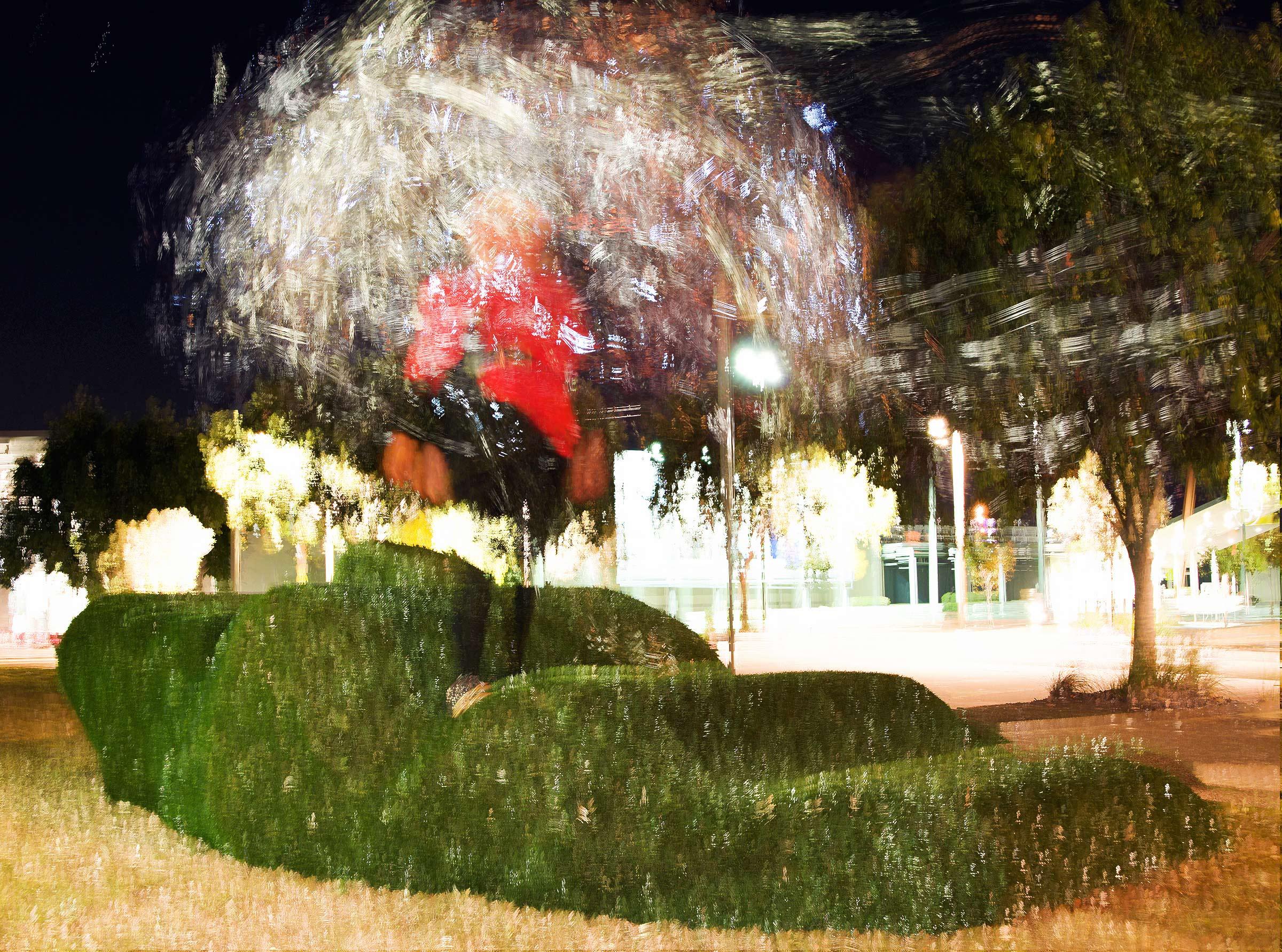 Wrapt Tree Me